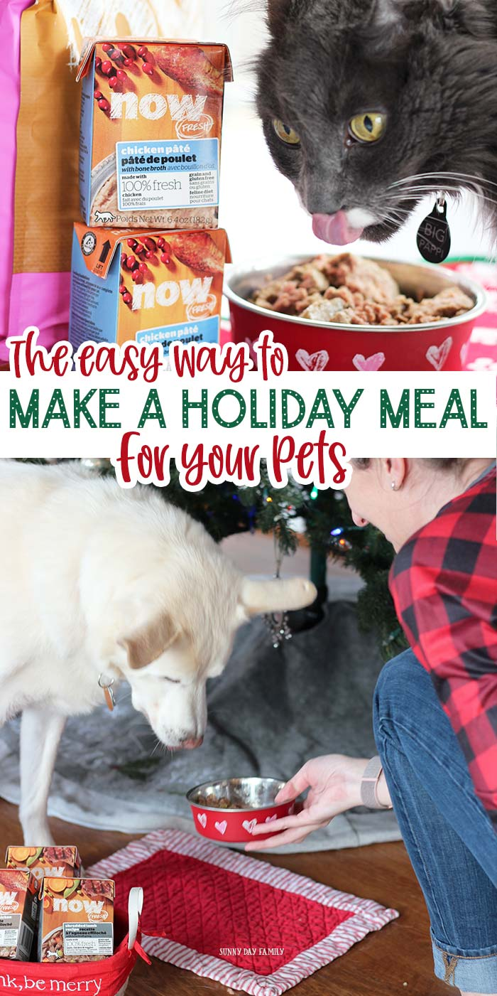 Looking for a high quality, premium pet food to treat your dog or cat this holiday? See the holiday meal that all 3 of my pets go crazy for! AD #dogfood #cats #pets #healthypet