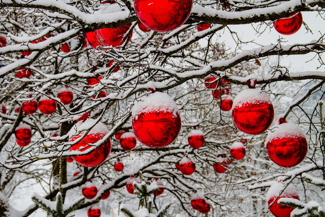 Christmas baubles on a snow-topped tree