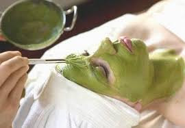 Cách lấy nước rau ngót sống trị nám da mặt hiệu quả