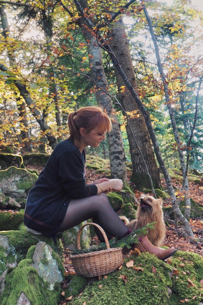 Balade en forêt, en automne, en Ardèche, avec son chien