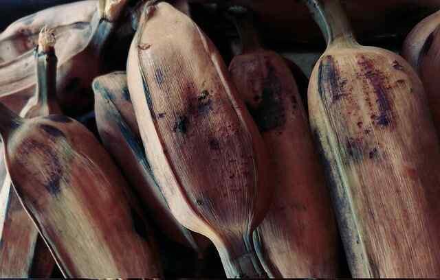 Buah pisang merupakan buah yang sanggup diolah menjadi aneka macam macam jenis makanan dari cam Manfaat Pisang Rebus Bagi Kesehatan Tubuh Enak dan Sehat