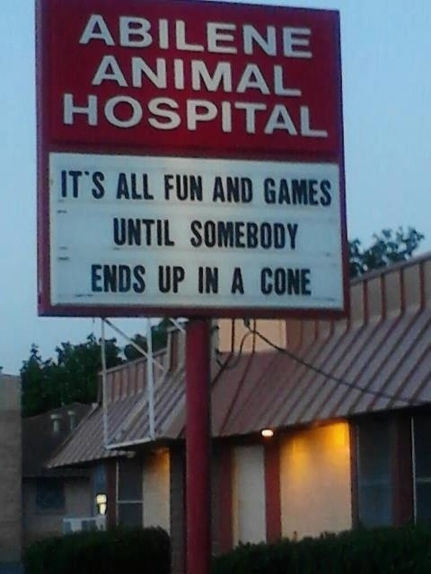 Animal Hospital Funny Sign Joke Photo