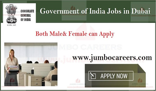 Dubai clerk jobs for Indians, Government of India latest jobs and careers,