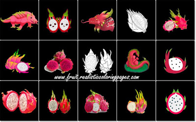 15 spectacular dragon fruit clipart