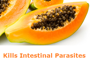 Health Benefits of Papaya - Paw paw Kills Intestinal Parasites