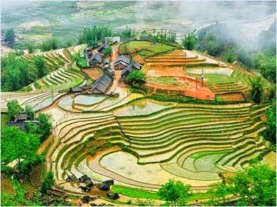 นาขั้นบันไดซาปา (Sapa Rice Terraces)