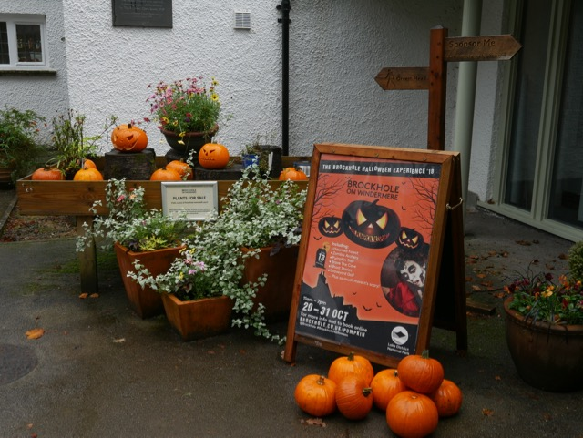 Halloween at Brockhole Lake District Visitor Centre