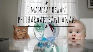 manfaat memelihara binatan bagi anak,hewan piaraan,hewan rumah,kecerdasan anak,anak O'Fish Oil