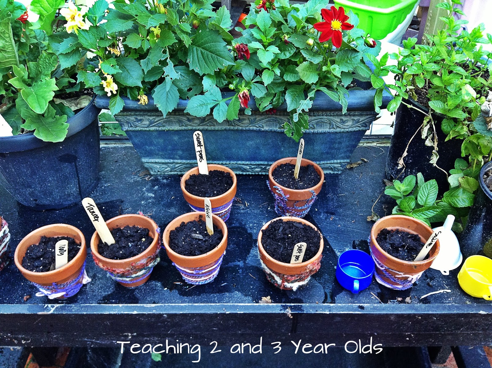 Teaching 2 And 3 Year Olds Preschool Gardening Theme