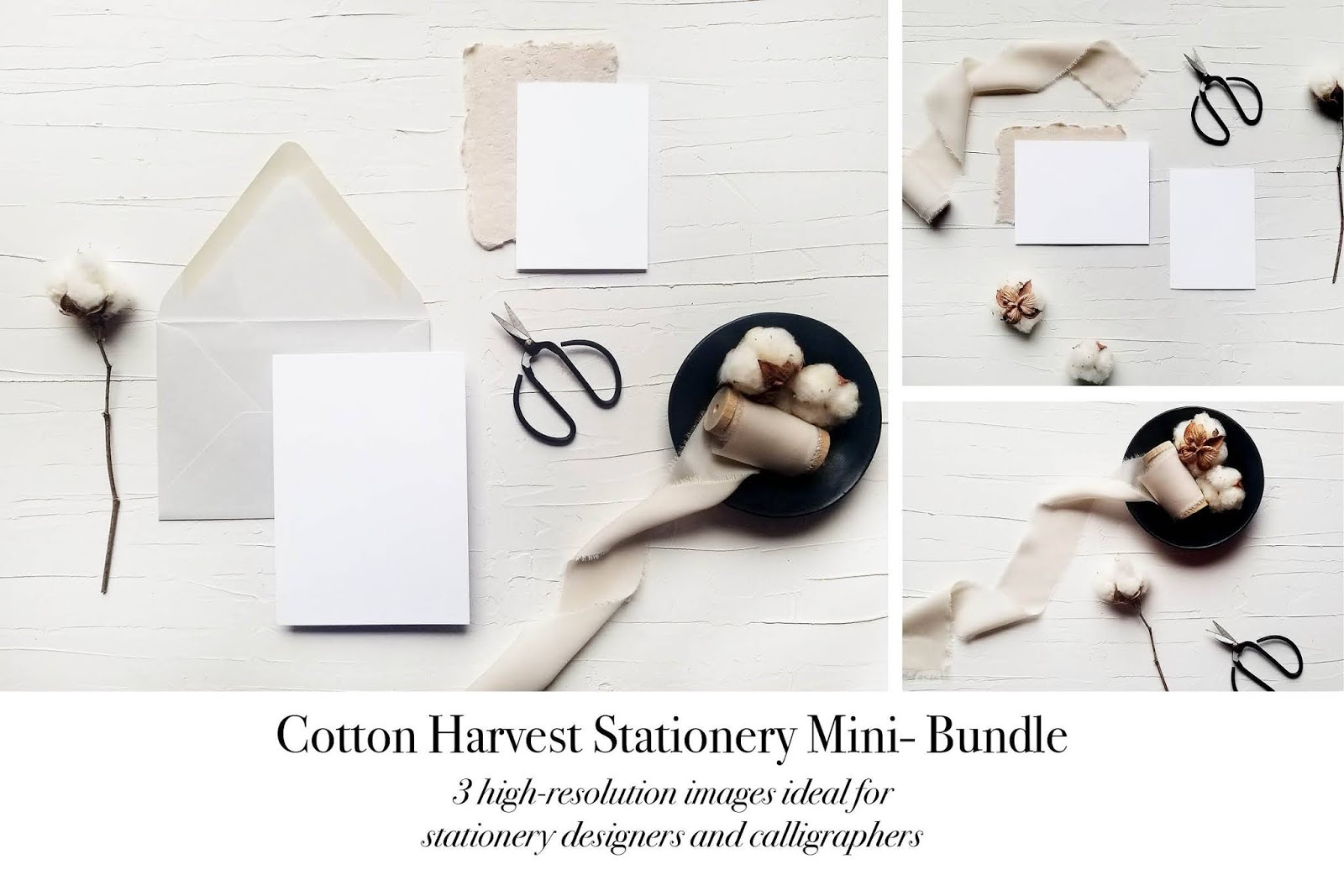 Cotton Harvest Stationery Mockups