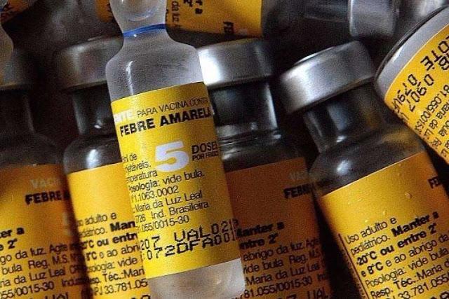 Às vésperas do Carnaval, Estados ficam em alerta para vacinar a população contra febre amarela