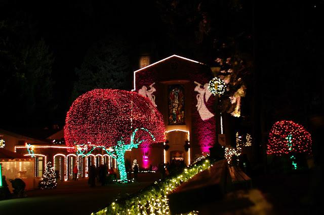 Zoo Light Portland