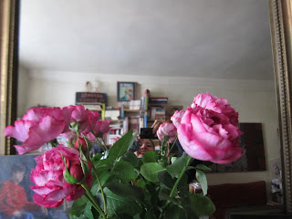 Rosa, roses, Rozen (si, si, regardez bien)