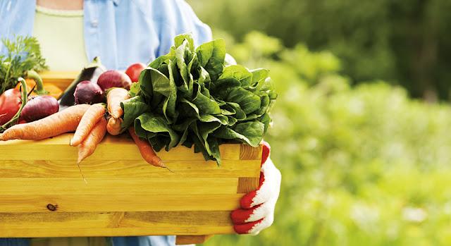 Desventajas productos orgánicos