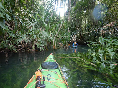 Nigel Foster photo, kayaking, jungle, river, Misool