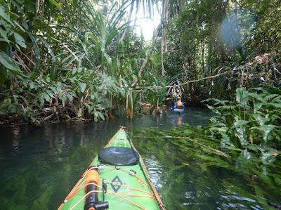 Nigel Foster photo, kayaking, jungle, river, Misool