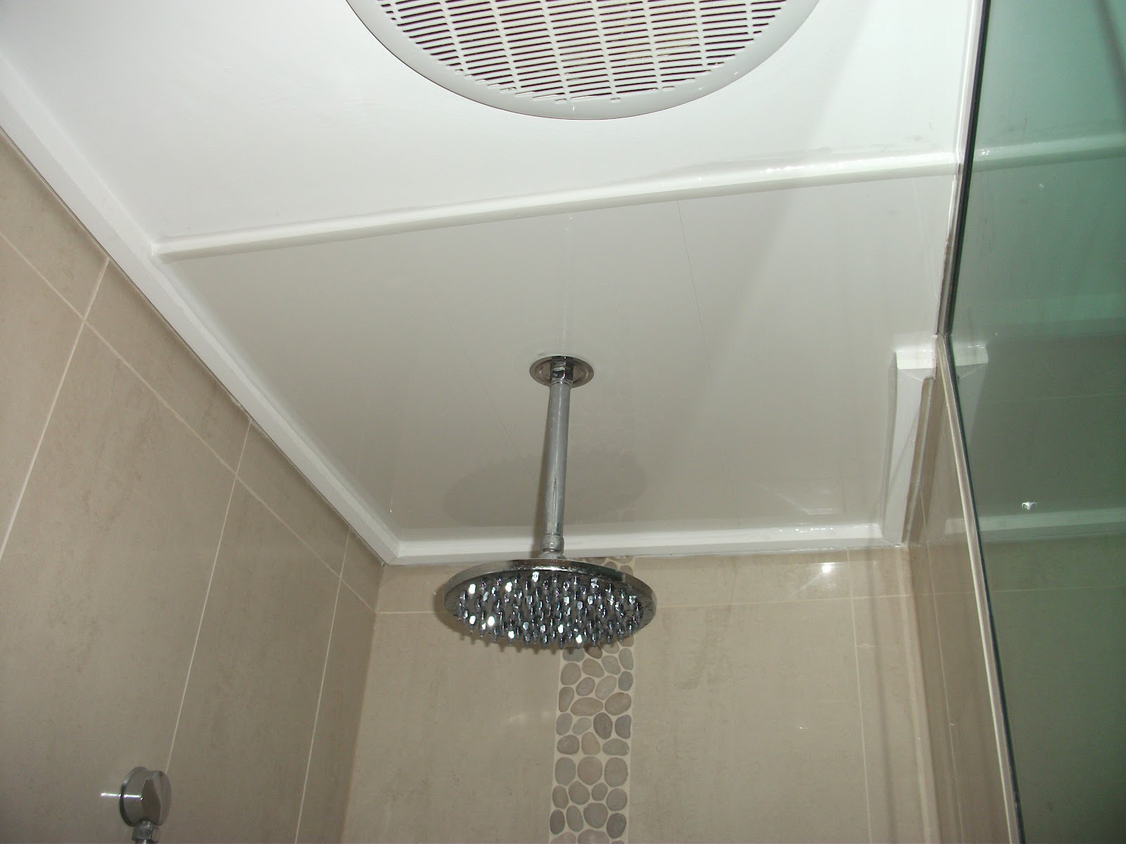 Superieur Panelscape Shower Ceiling Repair