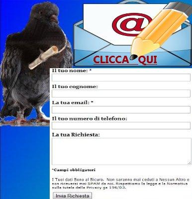 http://occasioniancona.altervista.org/contatti/
