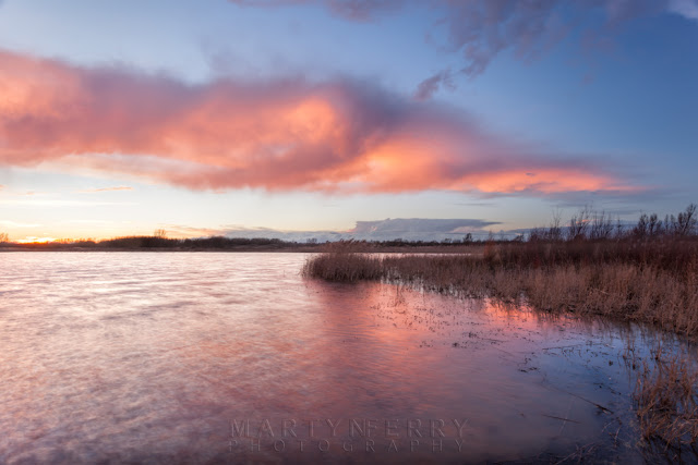 Bright pink clouds are mirrored in the lake at the RSPB Nature Reserve at Ouse Fen