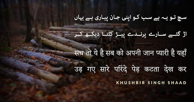 Urdu Poetry اردو شاعری
