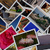 Google rolls out 2013 Image Search design to more countries, webmasters complain of traffic loss