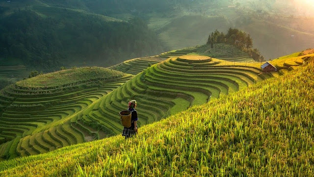 The people of the rocky plateau in Ha Giang 2