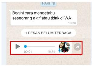 Gampang Banget! Cara Mengetahui Pesan WhatsApp Sudah Dibaca Atau Belum