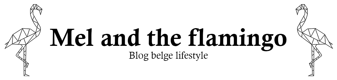 Mel and the flamingo - Blog belge lifestyle