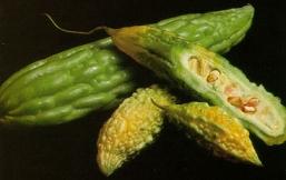 poza cum arata semintele din castravete amar insulina vegetala sau Mormodica charantia