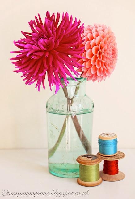 A pop of colour – homegrown Dahlias