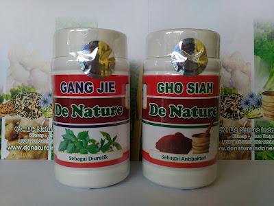 Gang Jie & GhoSiah