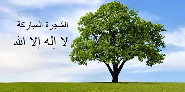 الشجرة المباركة لا إله إلا الله