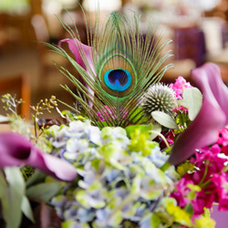 Jason Mann Photography. Peacock Inspired wedding.