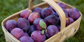 Top ! 5 Healthy benefits of plums that you must know - Healthy T1ps