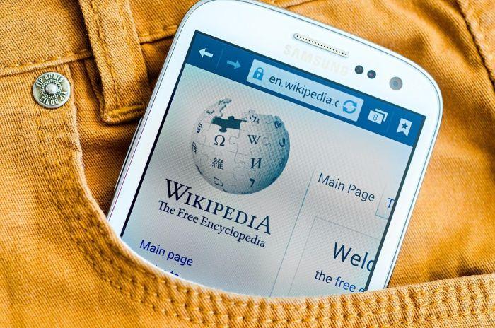 Upaya Google dan Wikipedia Memanjakan Pengguna Internet Indonesia