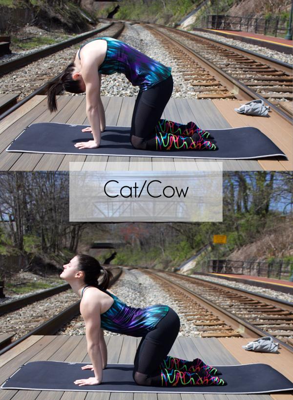 Yoga, Tree Pose, namaste, 5 Basic Yoga Poses for Beginners, Cat Cow pose, Chrissy's Knee Socks, Fabletics