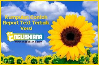Contoh Report Text Tumbuhan dan Hewan Pendek dalam Bahasa Inggris dan Artinya