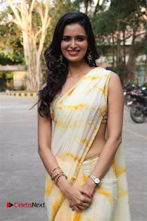 Actress Meenakshi Dixit Pictures in Saree at Bayam Oru Payanam Tamil Movie Press Meet  0017.jpg