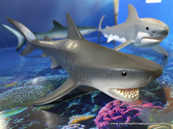 Hand-painted and great detail on these Schleich sharks