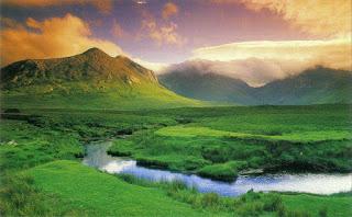 Bienvenidos al nuevo foro de apoyo a Noe #334 / 11.10.16 ~ 24.11.16 Connemara-Irlanda