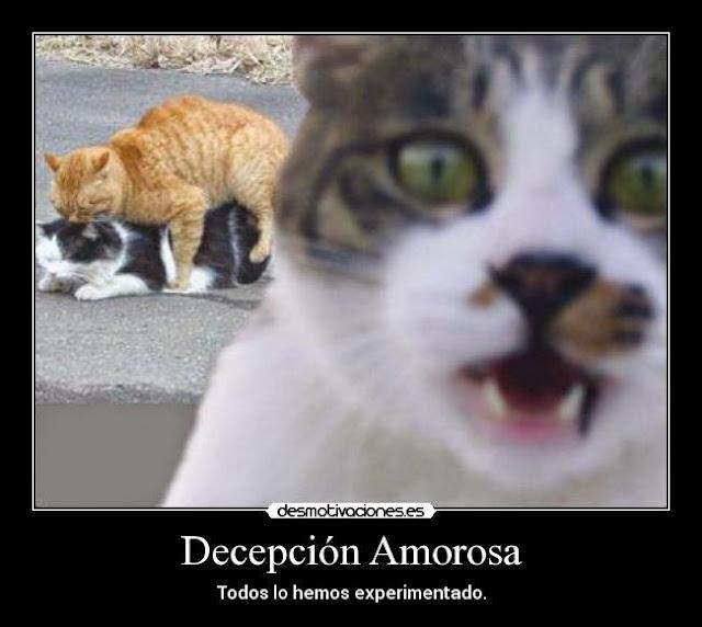 imagenes para portada de facebook con Frases de decepcion para descargar