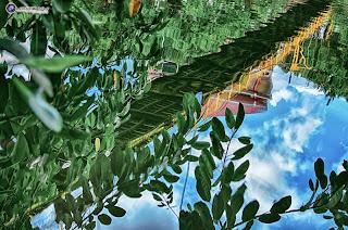 Chiều ở hồ Đức An 3