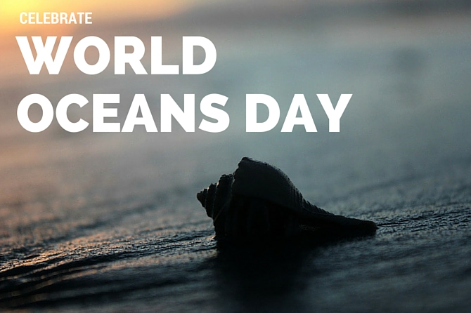 10 Ways to Celebrate the Ocean