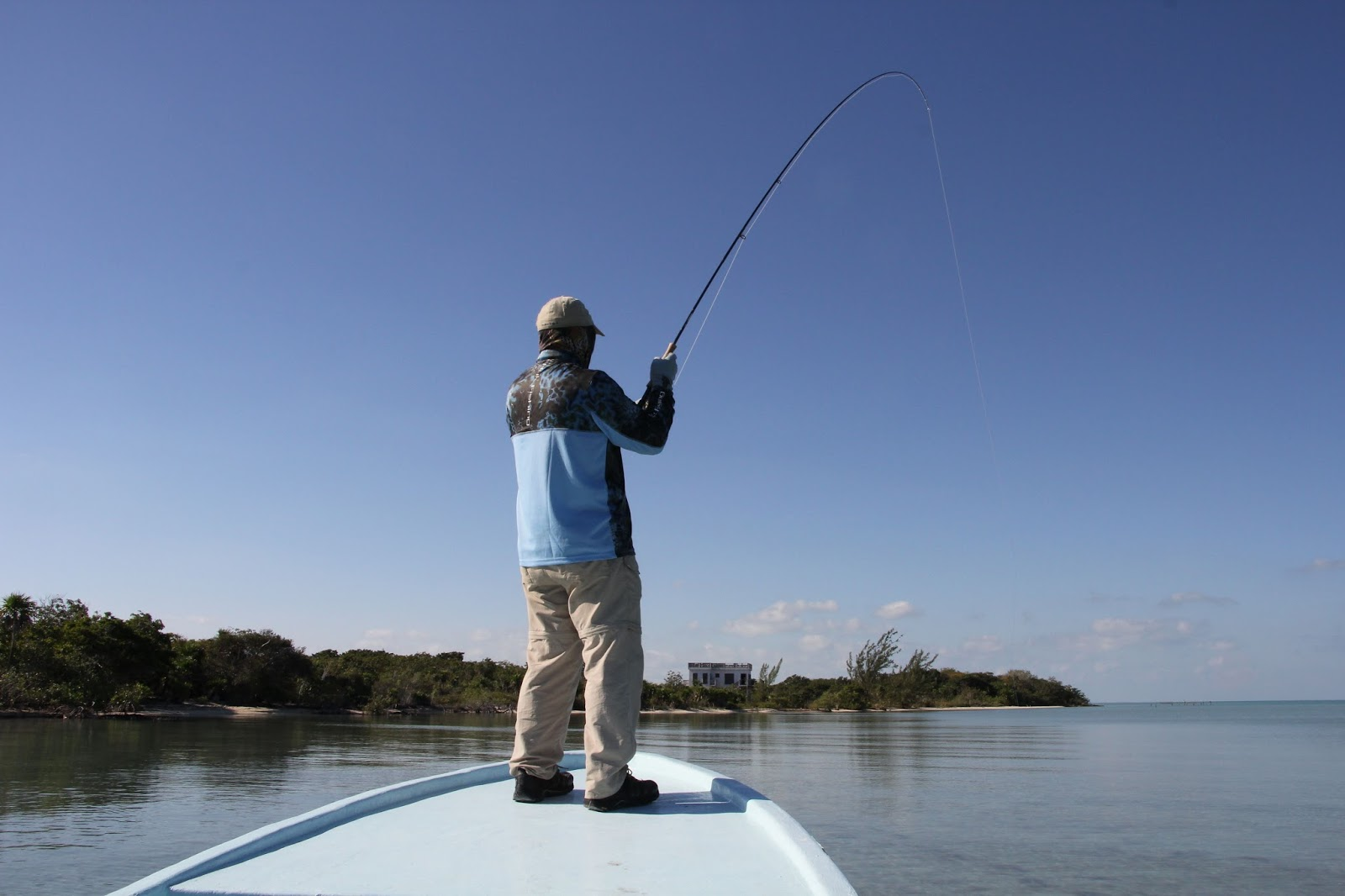 Central alberta fly tying club fly fishing in belize for Belize fishing charters