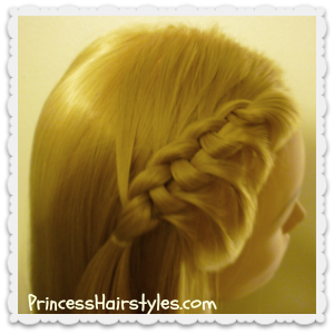 Flip knot braid video tutorial