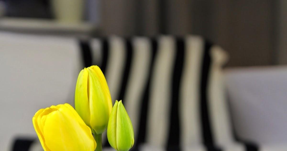 Bastian der Wohnprinz  Wohnblogger im Videoformat Frhlingsdeko  Streifen treffen Blumen