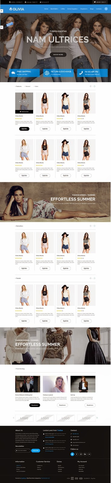 themeforest ecommerce template