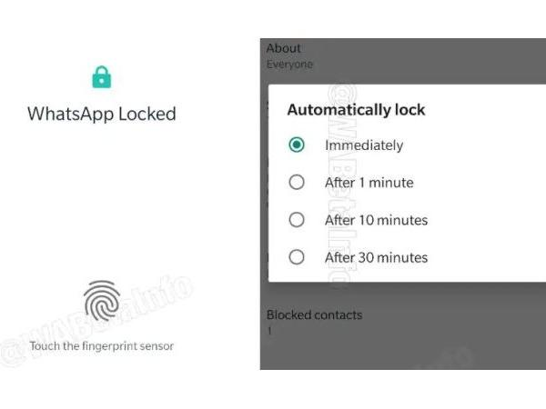 Whatsapp New update for security features available for beta version