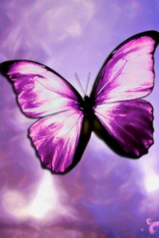 iPhoneZone: 20 Heart Touching Butterfly Wallpapers For iPhone