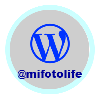 mifotolife, wordpress blog, barbara summers,